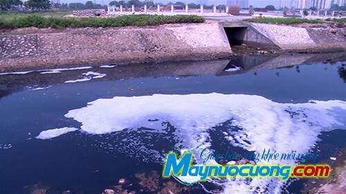 Nước thải chưa xử lý thải trực tiếp ra sông