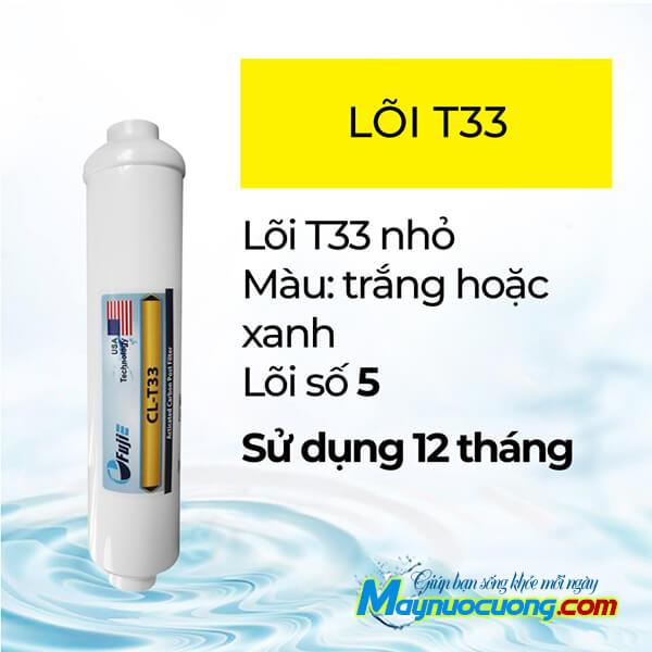 Lõi lọc chức năng T33