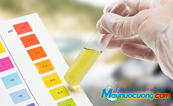 Chất chỉ thị màu đo độ pH