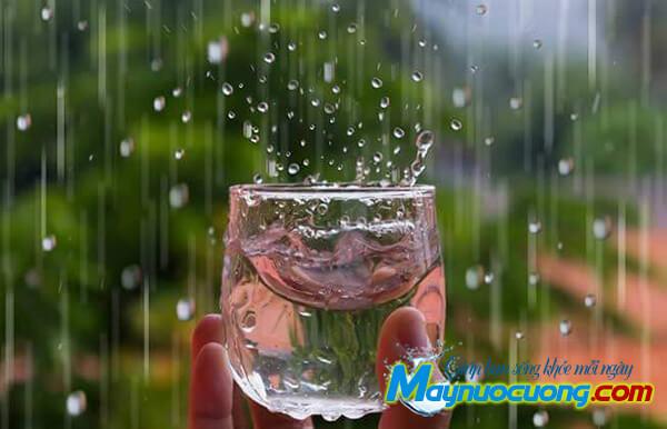 Nước mưa có sạch không?